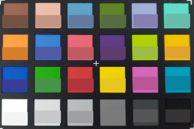 Photo of ColorChecker colors. The reference color is in the bottom half of each field.
