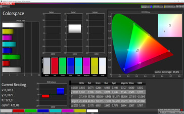 CalMAN: Colour Space - automatic contrast, standard colours, DCI P3 target colour space