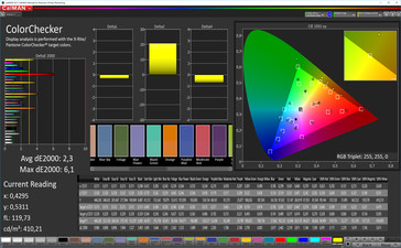 CalMAN Color Accuracy (sRGB Target Color Space) - Profile: Warm